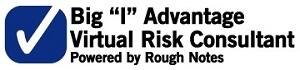 Virtual Risk Consultant